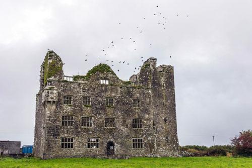 Irland (26)